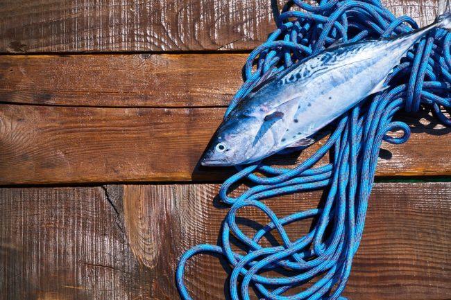 Omega 3 pesce Franco ristorante Palermo