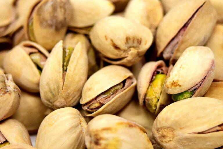 slow food pistacchio di Bronte